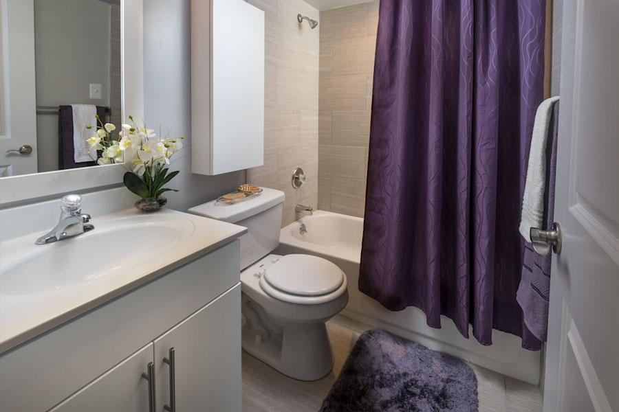 a modern shower with bathroom upgrades at Castlebrook Apartments in New Castle DE