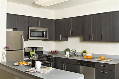 Kitchen example of Chestnut Terrace Mt. Airy apartments for rent - Galman Group
