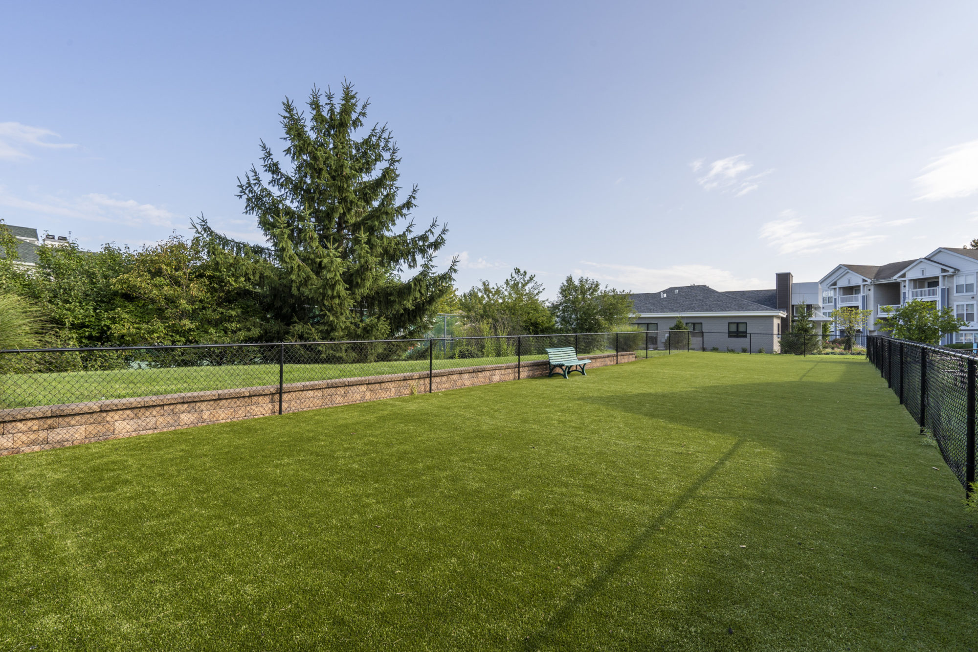 open yard space and dog park at Edge of Yardley
