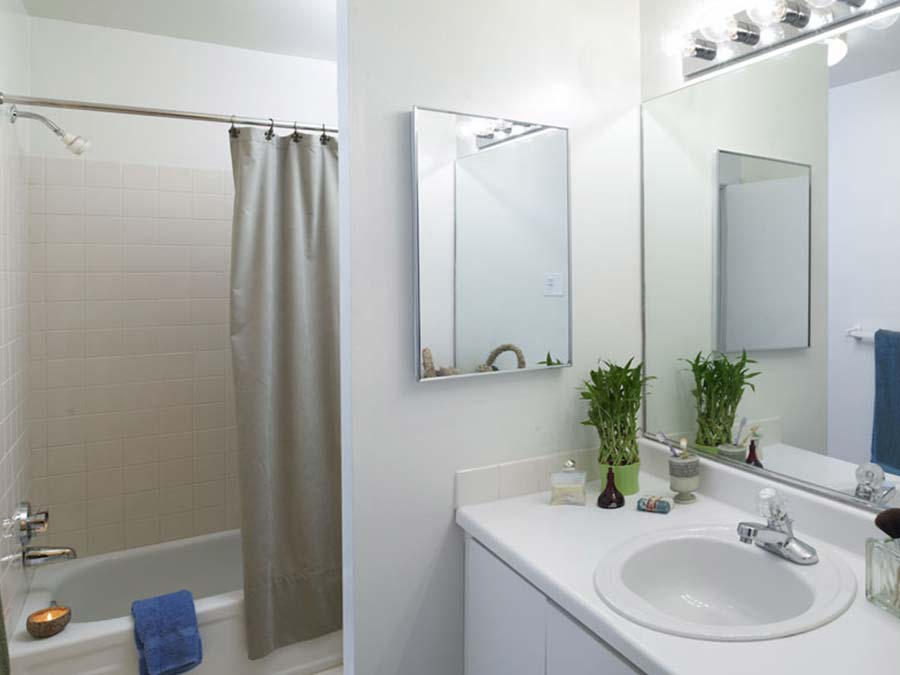 spacious shower and bathroom space at Buckingham Place Townhomes in Newark DE