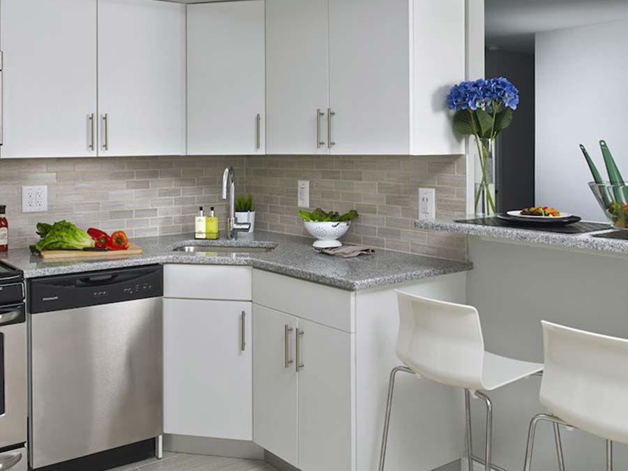 Chestnut Terrace apartment kitchen with dishwasher and breakfast bar