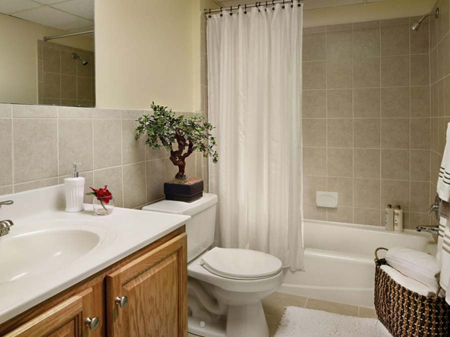 Green Valley Manor bathroom with bonsai tree