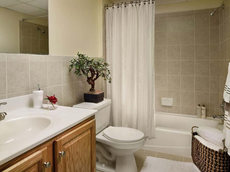 Green Valley Manor bathroom with bonsai tree