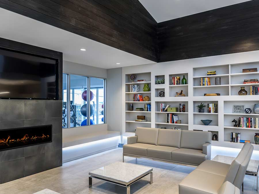 Sophias Place East apartment common area with modern seating with a bookshelf, fireplace and television located in New Castle DE