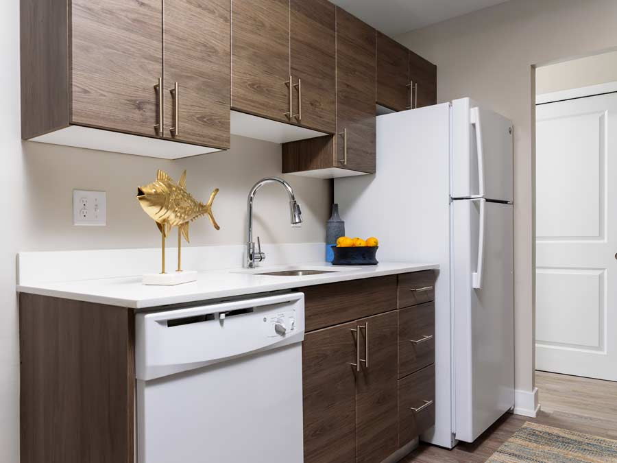 Algon Flats kitchen with new cabinetry and appliances